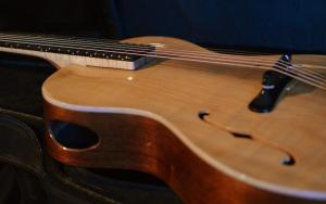 Acoustic Archtop jazz guitar